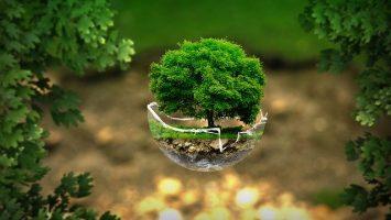 Messaggio ambientalista della Royal Family